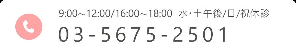 03-5675-2501